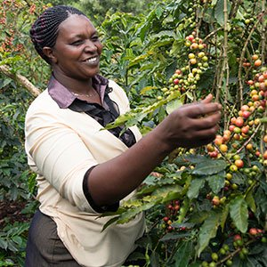 coffee farmer in Kenya