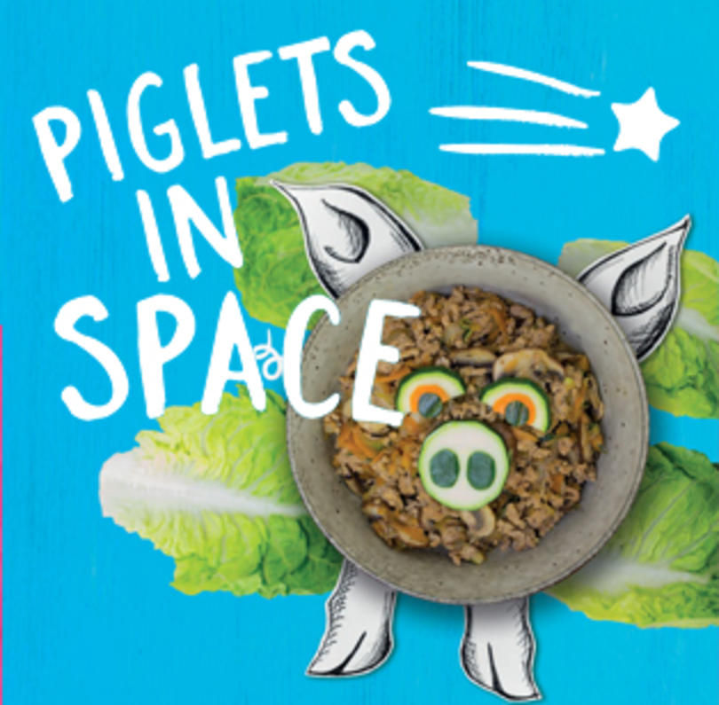 Piglets in Space Lesson Plan